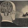 科学イラストと20世紀の人体 - 新刊書