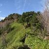 恵那山は天空の楽園