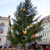 世界最古・ドレスデンのクリスマスマーケット【ドイツ観光おすすめ情報・冬】