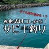 【初心者向け】堤防からサビキ釣り!ファミリーでもカップルでも楽しめる釣り!