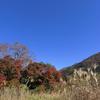 秋色のフィナーレ2020