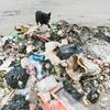 ウェイスト・マネジメント(WM)は廃棄物処理会社