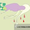 UAE(子宮動脈塞栓術)手術後の生理について
