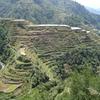 天国への階段!?世界遺産コルディリェーラの棚田群(フィリピン)