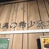 2017/8/27 ネコギギ再登場