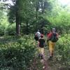 森のツアー