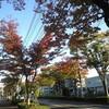 東武野田線に乗って敷地調査
