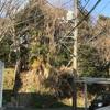 経塚山から掘り出された 聖徳太子像の伝説(横浜市港南区)