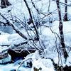 【冬の語源説=殖ゆ祭り?】古代研究から学ぶ【増ゆ・振ゆ・冷ゆ etc】