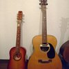 K.YairiのミニギターEnjoy Part2 Ladybirdを手に入れた