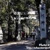 【社畜の休日】氷川神社に行ってきた【東京十社巡り⑦】