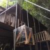 薪ストーブの搬入