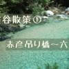 『阿寺ブルーを求めて!阿寺渓谷散策』 赤彦吊り橋~六段の滝編