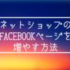ネットショップのFacebookページのハンドメイドファンをゼロから増やす3つの方法