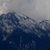 風雨の八ヶ岳と疎林のアカゲラとシメ