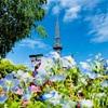 目をこらせば見えてくる『名古屋テレビ塔』