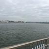 2017/10/18 久々のショアジギ in 堺浜海釣りテラス[アジング・スーパーライトショア]