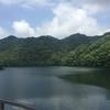 急に休みになったので、散歩がてら六甲山に紫陽花散策へ