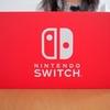 「Nintendo Switch本体 を定価で買う方法」を試してみたら本当に定価で買うことができました!試してみてわかった注意点やコツなど