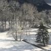 大雪のドイツ出張。