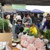 岡崎ファーマーズマーケットは少々雨だったがいい感じだった