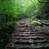 涼を求めて奥多摩「三頭山」へ!ブナの路で天然クーラー登山