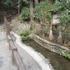 お鷹の道・真姿の池湧水群 2