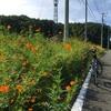 台風一過の毛呂山にランチに行ったよ 毛呂山から越生そしてときがわへクロスバイクでゆるポタ