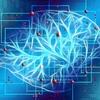 イーロン マスクの新しい挑戦 - 脳とコンピューターの融合