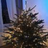 我が家のクリスマスデコレーション in ドイツ