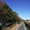 安城市内のランニングコース(自転車道)