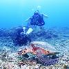♪家族でダイバー、そして慶良間ファンダイビング♪〜沖縄ダイビングPADIライセンス〜