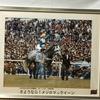 『競馬パネル:メジロマックイーン「1993年:引退式 京都競馬場」』