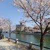 桜と原爆ドーム|平和記念公園がお花見スポットに