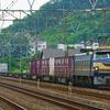 7月16日撮影 東海道線 大磯~二宮間 貨物列車撮影 ゼロロク27号機の5094ㇾ