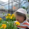 【2歳5ヶ月】うちの娘ができるようになったこと