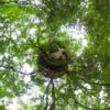 京都大原 に 歴史ある京都 の新しい庭園 【宝楽園/宝泉院】 #360pic