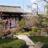 【2021年】『京の冬の旅』公開予定【3/1から】