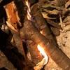 焚き火で焼くTボーンステーキ 骨つき肉の逆襲の巻