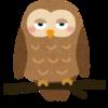 【悲報】メンフクロウの赤ちゃんが怖すぎる・・・・・もうこれエイリアンだろwwwww(2019年1月24日 追記)