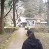 醒井養鱒場釣行 2019.03.28 ミノーのアクションと釣り方