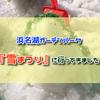 浜名湖ガーデンパーク「雪まつり」に行ってきました。