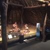 大阪府立弥生文化博物館に歴史を学びに日曜日行ってました