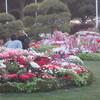 2018よこはま花と緑のスプリングフェアが4月13日からだよ(イベント)横浜中区周辺イベント情報口コミ評判
