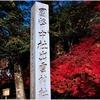 国幣中社・出雲大神宮(亀岡市)の秋風景 part39