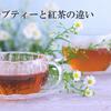 ハーブティーと紅茶の違い