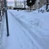 北陸は大雪でしたね。