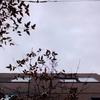 作曲工房 朝の天気 2018-02-25(日)くもり