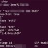 Open vSwitch on Ubuntu Server 12.04 LTS(7)