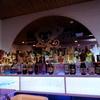 モンキーのいるレストラン&BAR